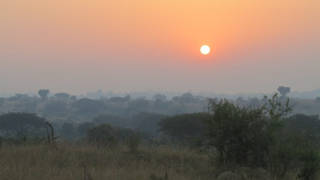Sonnenaufgang im Murchison Falls National Park in Uganda