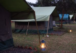 Red Chilli Restcamp im Murchison Falls National Park in Uganda