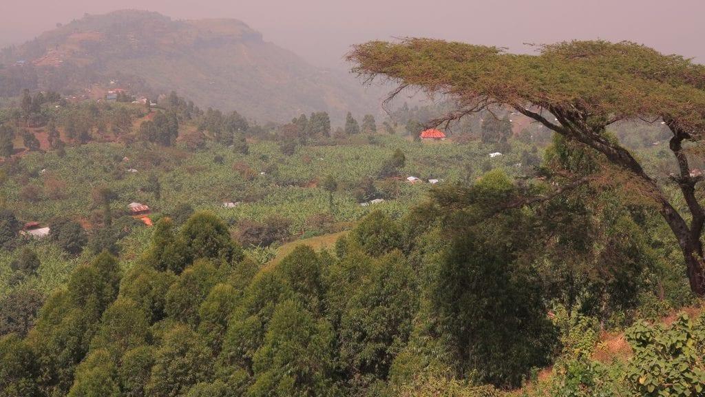 Berglandschaft bei Sipi in Uganda